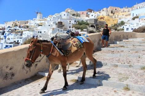 trashy-greek-islands-