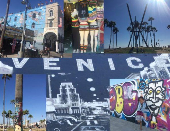 Venice Beach in a Capsule!