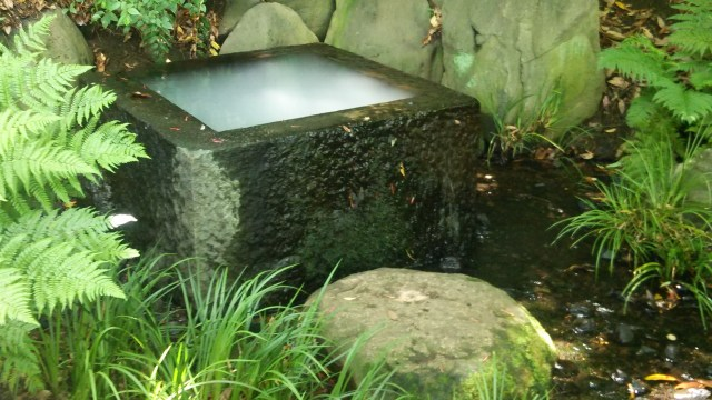 『神秘的な井戸』