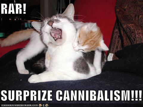 surprise-cannibalism