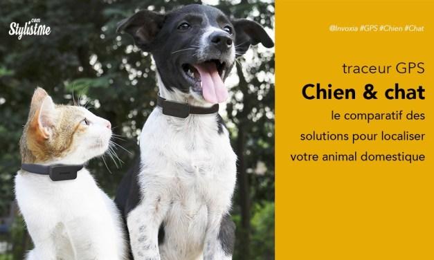 Meilleurs traceurs GPS chien chat avis test avec ou sans abonnement