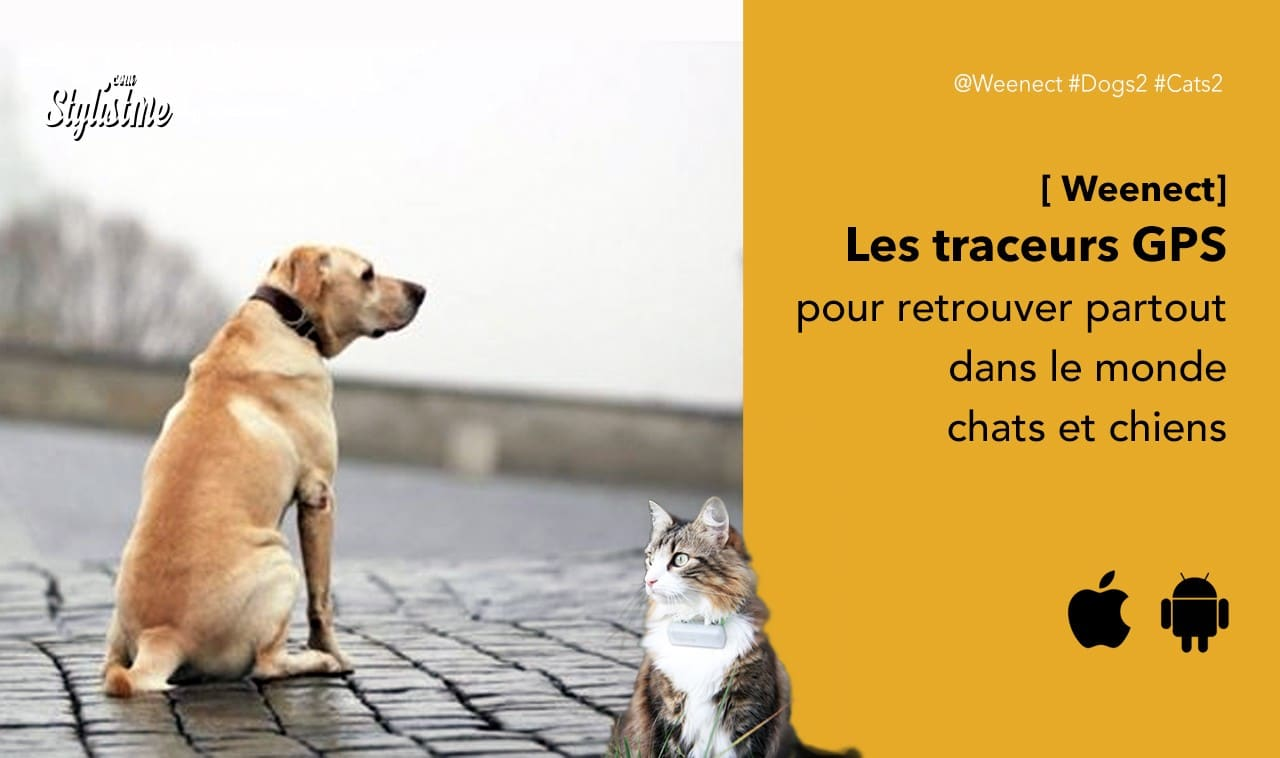 Weenect-avis-prix-traceur-gps-chien-chat