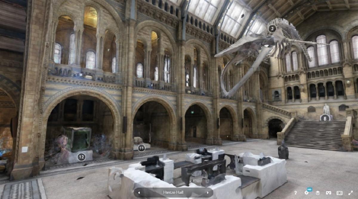Musée en réalité virtuelle MHN Londres