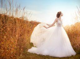 jim-hjelm-bridal-tulle-ball-sheer-sequin-embroidered-bodice-v-neckline-natural-open-back-sweep-train-8610_lg