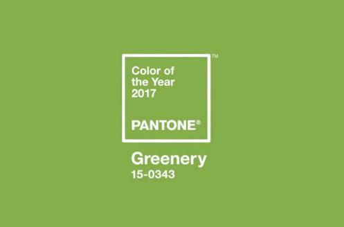 color 2017