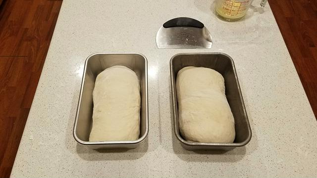 Bread Dough in Pan