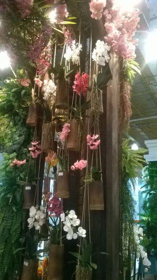 orquidea-pendente-bambu