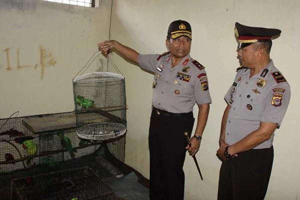 Polisi Amankan Satwa Burung Yang Dilindungi