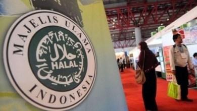 Photo of Wapres Kiai Ma'ruf Nitip ke Para Khatib Soal Industri Halal