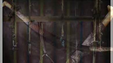 Photo of Sanksi bagi Penghina Nabi