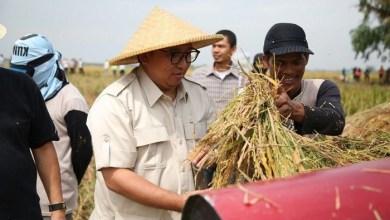 Photo of Di Tengah Pandemi, Perhatikan Juga Nasib Petani