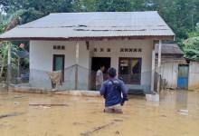 Photo of Calon Ibu Kota Baru Dilaporkan Kebanjiran