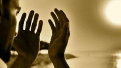 Photo of Tangan Ini Kelak akan Jadi Saksi