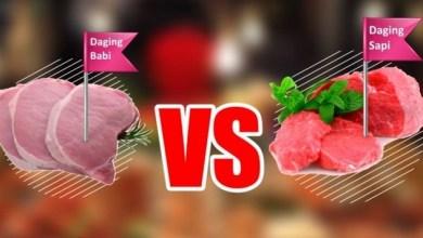 Photo of Jangan Tertipu, Inilah Beda Antara Daging Sapi dan Babi