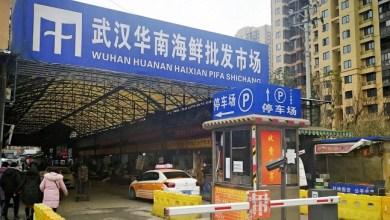 Photo of Wuhan Resmi Larang Warganya Makan Hewan Liar