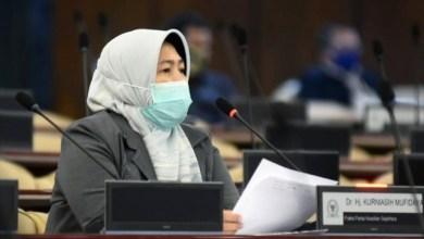 Photo of Kasus Positif Harian Tembus 4.000, Mufida: Tunda Pilkada Serentak 2020