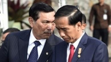 Photo of Pak Presiden Kok Tiba-tiba Jadi Luhut?