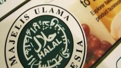 Photo of Industi Halal Diharapkan Berkembang di Pasar Global