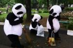 WWF: Agenda Lingkungan, Kebijakan Politik yang Terabaikan Oleh Anggota Dewan