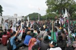 Ini Sikap BEM Nasional Terkait Kebijakan Jokowi yang Tidak Pro Rakyat