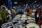 Seafood Savers Gandeng Perusahaan Lagi untuk Wujudkan Perikanan Berkelanjutan