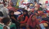 Miris, Peringati Hari HAM Sedunia, Rohingya Masih Menjadi Manusia Paling Teraniaya
