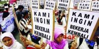 Rupiah Melemah, Karyawan Sosis di PHK Sepihak oleh Perusahaan