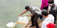 Sudin KPKP Jakarta Pusat Tebar Bibit Ikan Nila, Warga Boleh Mancing