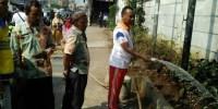 Lurah Kampung Bali Tata Penghijauan Jalan Jati Baru Raya