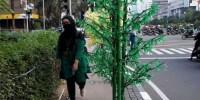 Pemprov DKI Berterima Kasih atas Masukan Masyarakat Terkait Pohon Hias