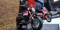 Honda Monkey, Motor Ikonik dan Unik Mulai Dipasarkan AHM