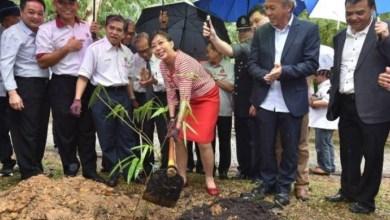 Photo of Teresa gembira menteri PN teruskan dasar tanam pokok buluh