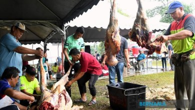 Photo of SOP ibadah korban termasuk kehadiran dan kesihatan haiwan