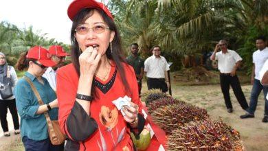 Photo of Teresa mahu slogan 'Sayangi Sawitku' dikekalkan