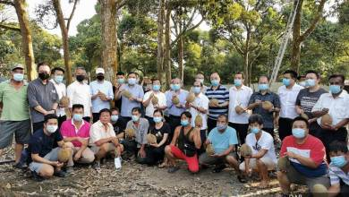 Photo of MB Pahang tetap mahu pekebun haram durian 'kosongkan' tanah