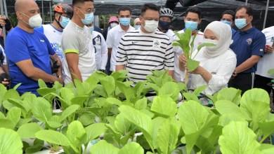 Photo of Peluang kunjungi ekopelancongan di Perlis