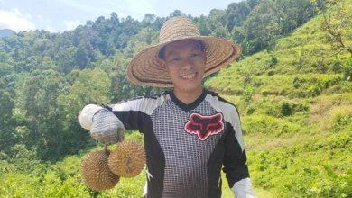 Photo of Pengerusi selamatkan kebun durian haram akui ahli DAP