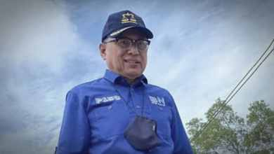 Photo of Sebiji batu Mahathir hanya bunuh satu burung sahaja