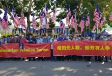 Photo of Penanam durian Musang King tiada hak di sisi undang2 fail permohonan