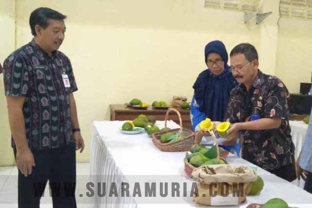 durian terbaik jepara