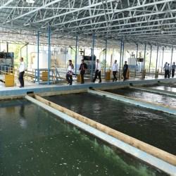 Intrusi Air Laut, Pasok Air Bersih ke Banjarmasin Berkurang