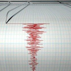 Gempa 6,1 Magnitudo Guncang Keerom Terasa sampai Jayapura