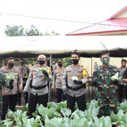 SEBANYAK 167 Kampung Tangguh Wilayah Polda Kalsel Disiapkan Pula Ketahanan Pangan