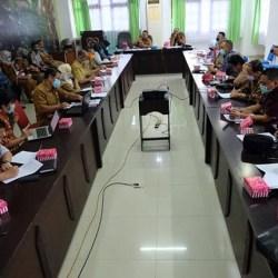 KALTENG Tujuan DPRD Kalsel Studi Komparasi Raperda Perlindungan Budaya
