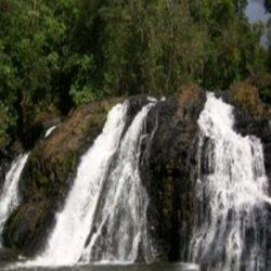 RATUSAN Hektare Kawasan Hutan Masuk Areal Pembangunan Riam Kiwa