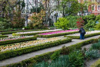 Real Jardim Botânico em o que fazer em Madri
