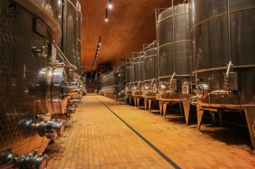 Fermentação da Antinori nas Vinicolas da Toscana