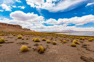 Salar de Tara no Deserto do Atacama no Chile
