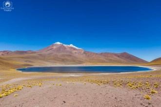 Laguna Miñiques nas Lagunas Altiplânicas