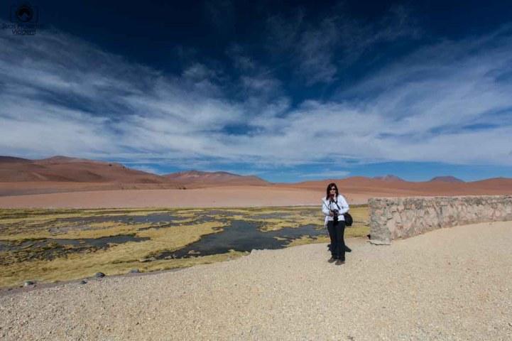 Panoramica do Mirador Quebrada Quepiaco no Salar de Tara no Deserto do Atacama